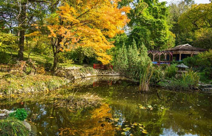 Grădina Botanică e locul în care omul se duce să facă liniște în minte și să-și pună ordine în gânduri
