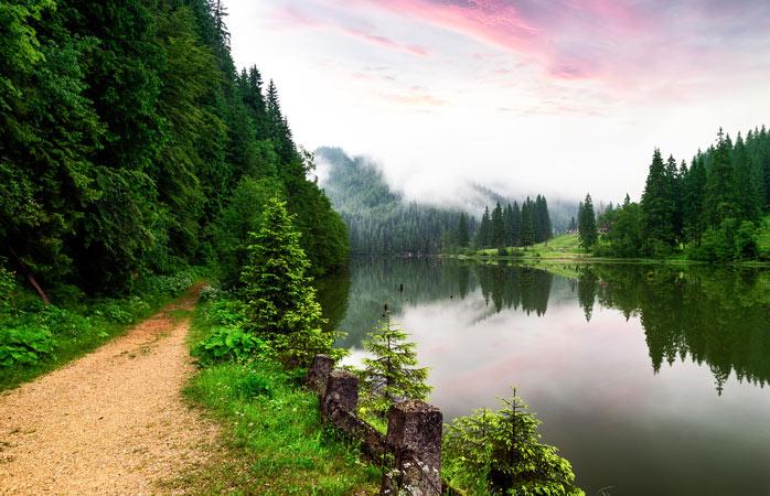 Lacul Roșu – comoara lacustră din mijlocul munților acoperiți de pini