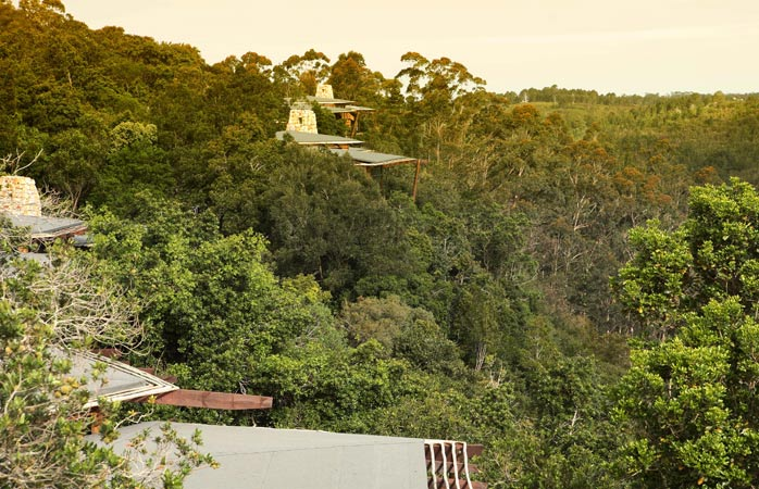 O casuță în copac cu vedere spre la Tsala, cea mai bună cazare din Plettenberg Bay © Tsala Treetop Lodge.