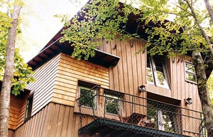 America de Nord are multe căsuțe în copaci luxoase, dar căsuța Winvian din Connecticut este favorita noastră.