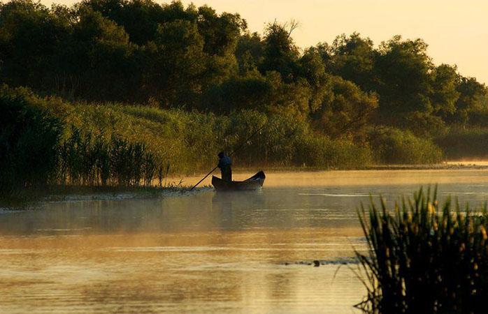 Flora și fauna deltei văzute într-o plimbare cu barca