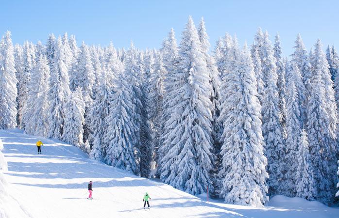 Unde vezi cu ochii numai alb, pitoresc și brazi îmbrăcați în zăpadă… asta descrie perfect stațiunea Kopaonik situată la o aruncătură de băț de patrie