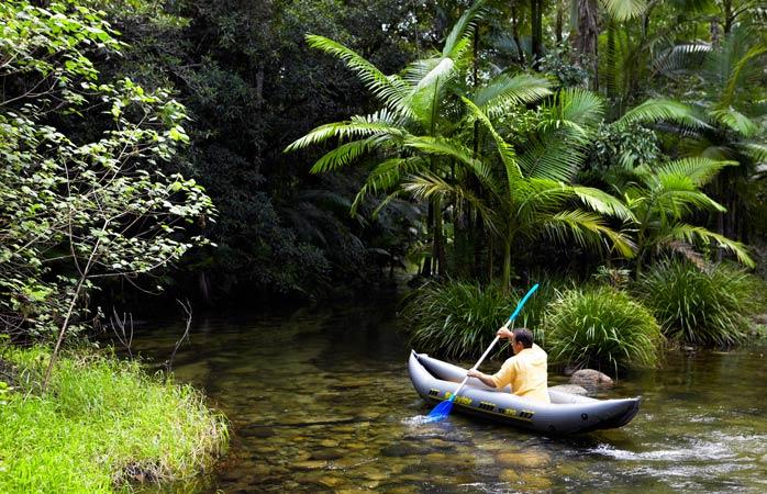 Vrei o metodă garantat eficientă pentru a cunoaște pădurea tropicală? Pornește-o frumușel la pas cu caiacul prin Tropicele Umede ale Queenslandului